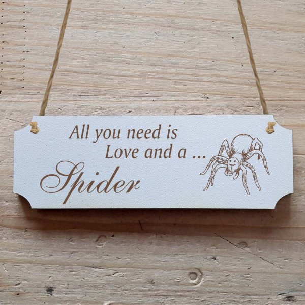 Dekoschild « All you need is Love and a Spider » Spinne 2