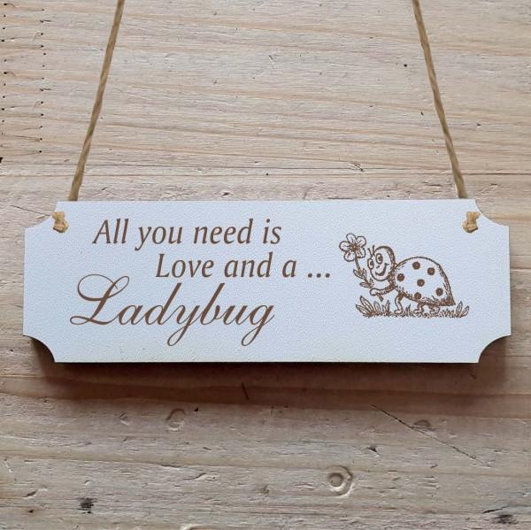Dekoschild « All you need is Love and a Ladybug » Marienkäfer