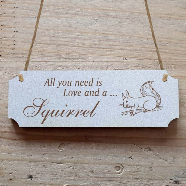 Dekoschild « All you need is Love and a Squirrel » Eichhörnchen 3