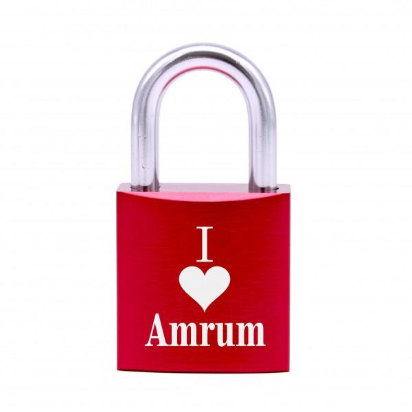 Schloss mit Gravur I love Amrum • 5 Farben